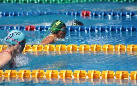 Regresan las competencias de natación con la categoría Novatos y Grupo C